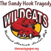 As The New School Year Begins…Letters To Sandy Hook Elemetary