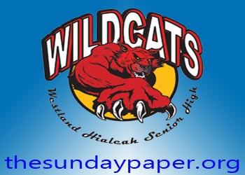 sunday paper westland